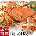 ≪送料無料≫超特大「毛蟹」1尾×約1kg(ロシア産)※冷凍 【冷凍同梱可能】 ☆