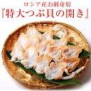 訳あり お刺身 貝 送料無料 つぶ貝の開き 大型サイズ 500g (11〜15個入り) 専用の箱