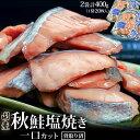 鮭 サケ さけ 骨取り済み 国産秋鮭 塩焼き 一口カット 2...