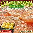 フロリダ産 ゴールデンクラウングレープフルーツ ルビー 6〜8玉 約2.5kg【同梱不可】○