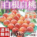 送料無料 桃 白桃 山形県産 白根白桃 約5kg(10〜20玉)