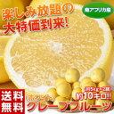 《送料無料》南アフリカ産 グレープフルーツ(ホワイト) 約10kg(約5kg×2箱) ※常温 【同梱不可】 〇