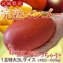 【特大サイズがあまっちゃう!?】宮崎県産 『特大3Lマンゴー』 1玉(450〜509g)【同梱