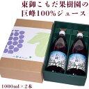 ぶどう 巨峰 長野県 東御 こもだ果樹園の巨峰100%ジュース 1000ml×2本 ※常温 送料無料