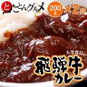 『飛騨牛カレー』 200g×2P ※冷凍 【冷凍同梱可能】