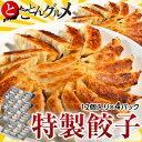 特製餃子 12個入り×4パックセット(1個あたり17g) ※冷凍 【冷凍同梱可能】  ☆