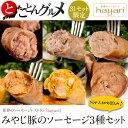 世界のソーセージレストランhayari『みやじ豚のソーセージ3種セット』※冷凍【冷凍同梱可能】☆