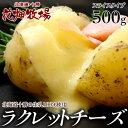 チーズ 花畑牧場 ラクレットチーズ スライス 500g 伸びるチーズ 十勝 北海道 ラクレッ