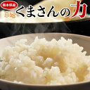 《送料無料》熊本県産 『くまさんの力』 白米 5kg ※常温【同梱不可】○