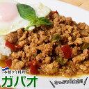 業務用 本格タイ料理 スパイシー ガパオ 鶏肉 鶏ひき肉 バジル炒め 160g×8食 アジア飯