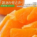 みかん 柑橘 佐賀県産 訳あり せとか 約2.5kg(訳あり品 スレ 傷あり) 送料無料