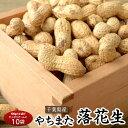 落花生 らっかせい ピーナッツ ナッツ 千葉県八街産 殻付き落花生 100g×10袋 送料無料