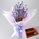 【癒しの香り】母の日に北海道産の癒し花「ラベンダー鉢植え」と人気の彩路季の生キャラメルをラッピングしてお届けいたします!