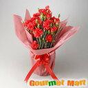 カーネーション5号鉢植え(鉢花)母の日定番の赤いお花をラッピングしてお届けいたします!【楽ギフ_のし宛書】