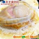 よつ葉バター&北海道産 ホタテ片貝10枚セット