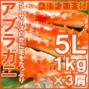 【送料無料】アブラガニ 5Lサイズ×3肩 正規品 合計3kg...