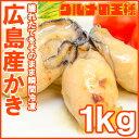 送料無料 広島産 牡蠣 カキ 1kg 無添加 Lサイズの牡蠣...