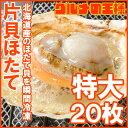 【送料無料】ホタテ ほたて 特大 片貝ほたて 20枚 10枚...