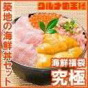 【送料無料】築地の海鮮丼セット 究極 約2杯分 本マグロ大ト...