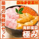 【送料無料】築地の海鮮丼セット 極み 約2杯分 本マグロ大ト...