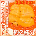 築地市場のウニイクラ丼セット 2杯分 無添加生ウニ100g&...