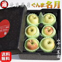 ぐんま名月 青森りんご 珠玉の6玉 宮西農園(秀品)青森りんご 送料無料 りんご 送料無料 リンゴ