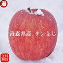 青森 りんご 10kg 送料無料 サンふじ 家庭用(22玉〜46