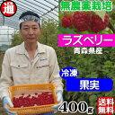 ラズベリー 冷凍 果実 送料無料 (100g×4パック) 無...