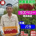 ラズベリー 冷凍 バラ 送料無料 (1kg×3パック) 無農...