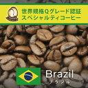 【訳あり大処分・200g】ブラジル世界規格Qグレード珈琲豆(200g/20190823〜0903)