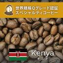 ケニア世界規格Qグレード珈琲豆(300g)/グルメコーヒー豆専門加藤珈琲店/珈琲豆