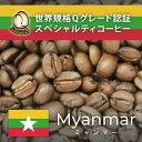 ミャンマー世界規格Qグレード珈琲豆(200g)/グルメコーヒー豆専門加藤珈琲店/珈琲豆