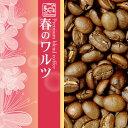 プレミアムブレンド【春のワルツ】(2kg)(春×4)/グルメコーヒー豆専門加藤珈琲店/珈琲豆