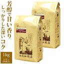 送料無料 [1kg]コロンビア・ウィラアルタEX特別珈琲セット(ウィラEX×2)/珈琲豆