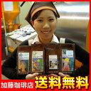 ■地球環境に優しい珈琲豆セット/グルメコーヒー豆専門加藤珈琲店