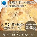 [ ピッツァ クアトロ フォルマッジ 230g ] 冷凍 ピザ イタリア イタリアン 生地 チーズ モッツァレラチーズ リコッタ ゴルゴンゾーラ オリーブオイル 調理 トースター オーブン ホームパー・・・