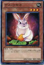 デス・ウサギ ノーマル PHSW-JP036 地属性 レベル3 【遊戯王カード】