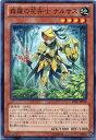 森羅の花卉士 ナルサス ノーマル LVAL-JP018 地属性 レベル4【遊戯王カード】
