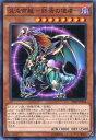 混沌帝龍 -終焉の使者- ノーマルパラレル 20AP-JP028 闇属性 レベル8【遊戯王カード】スレあり