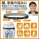 ペルビスベルト【pelvis belt】デューク更家 推奨 骨盤矯正 ダイエット サポーター