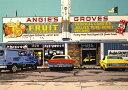 鈴木英人「ANGIE'S GROVES」1988年 リトグラフ 額付版画作品国内 送料無料