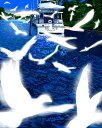 鈴木英人「戯れあう翼」-LEAVING THE HARBOR- 2012年 EMグラフ 額付版画作品国内 送料無料