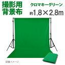 撮影用 背景布 布バック グリーン 約1.8m×2.8m 布バック スタジオ大型全身撮影用 撮影 背景 cg バックスクリーン《グリーン 緑 クロ…