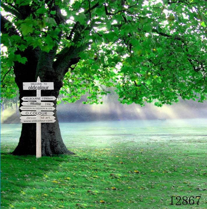撮影用背景デジタル写真背景2枚セット(横幅1.5m)の紹介画像2