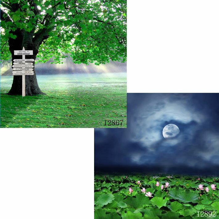 撮影用背景デジタル写真背景2枚セット(横幅1.5m)