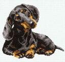 メール便送料無料 クロスステッチ 刺繍キット RIOLIS ダックスフントDachshund リオリス 犬の刺繍 クロスステッチキット クロスステッチ ししゅう 刺繍