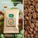 ショッピングコーヒー豆 エメラルドマウンテン 100g
