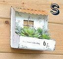 ティンルーフプランター Sサイズ レッド アンティーク風 azi-azi アジアジ 壁掛けプランター ガーデン 雑貨 ハンギング ポット ガーデニング雑貨