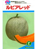 """红瓜子卢比交配天皇""""日本天皇协和净甜瓜。绿得宝种的事情,如果你离开""""[メロン種 みかど交配・・・ルピアレッド・・・<みかど協和のネットメロンです。 種のことならお任せグリーンデポ>]"""