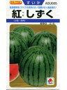 スイカ種 タキイ交配 紅しずく タキイの小玉スイカ品種です。...